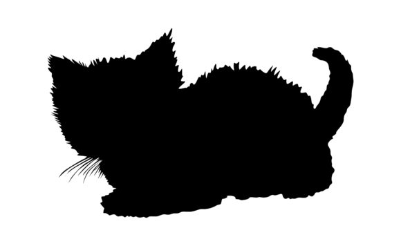 Print on Demand: Animal - Cat Silhouette Vector Graphic Crafts By Arief Sapta Adjie