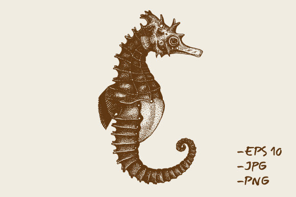Print on Demand: Hand Drawn Seahorses Animal Sea Graphic Illustrations By Rimbu Creative