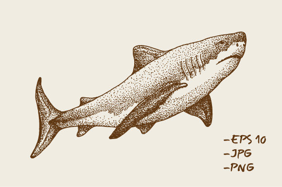 Download Free Hand Drawn Shark Fish Animal Sea Graphic By Rimbu Creative for Cricut Explore, Silhouette and other cutting machines.