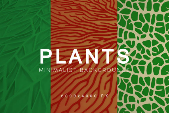 Download Free Minimalist Plant Backgrounds Graphic By Artistmef Creative Fabrica for Cricut Explore, Silhouette and other cutting machines.