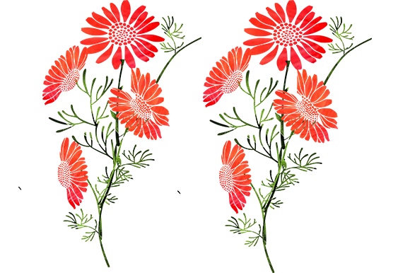 Print on Demand: Orange Flowers Graphic Illustrations By arts4busykids