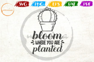 Bloom Where You Are Planted Graphic By Uramina Creative Fabrica
