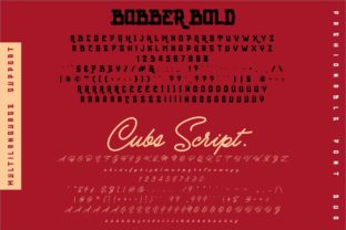 Print on Demand: Bobber Bold & Cubs Script Display Font By inumocca_type 10