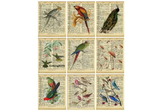 Print on Demand: Dictionary Pages Birds Collage Tags Graphic Illustrations By Scrapbook Attic Studio
