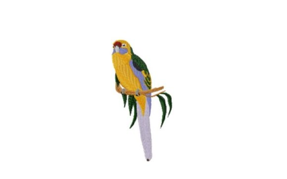 Green Rosella Birds Embroidery Design By Red Moon Gardens