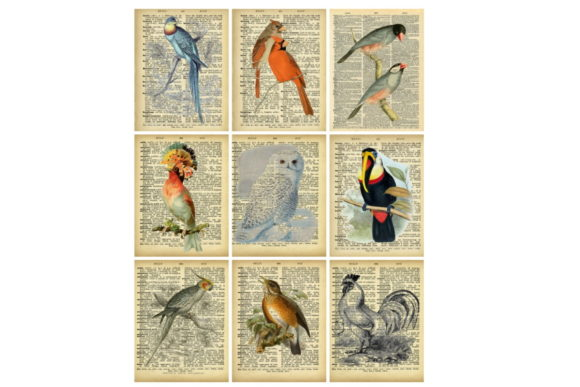 Print on Demand: Printable Dictionary Pages Birds Collage Graphic Illustrations By Scrapbook Attic Studio