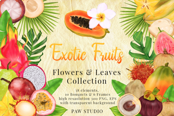 Print on Demand: Tropical Graphic Fruits, Flowers, Leaves Graphic Illustrations By PawStudio - Image 1
