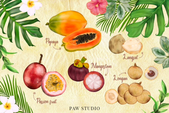 Print on Demand: Tropical Graphic Fruits, Flowers, Leaves Graphic Illustrations By PawStudio - Image 3