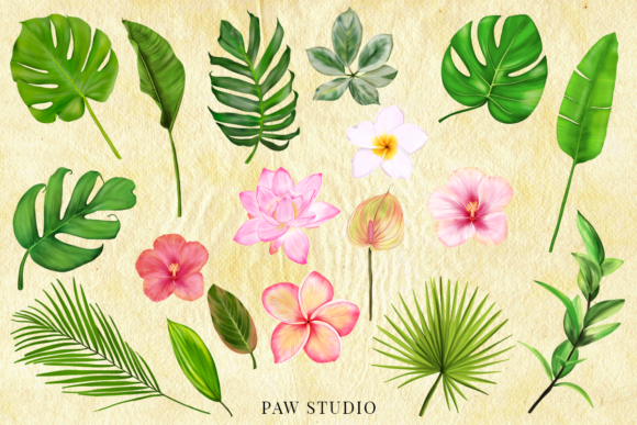 Download Free Tropical Graphic Fruits Flowers Leaves Graphic By Pawstudio Creative Fabrica for Cricut Explore, Silhouette and other cutting machines.