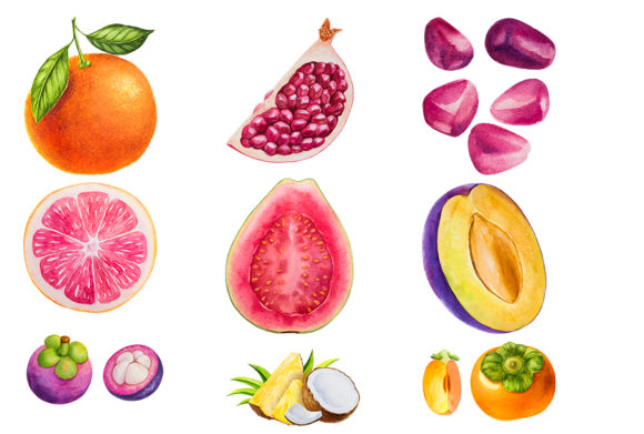70 Watercolor Fruits Collection Graphic Illustrations By authemes