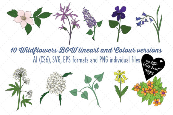 Wildflowers (Lineart) Graphic Illustrations By My Little Black Heart