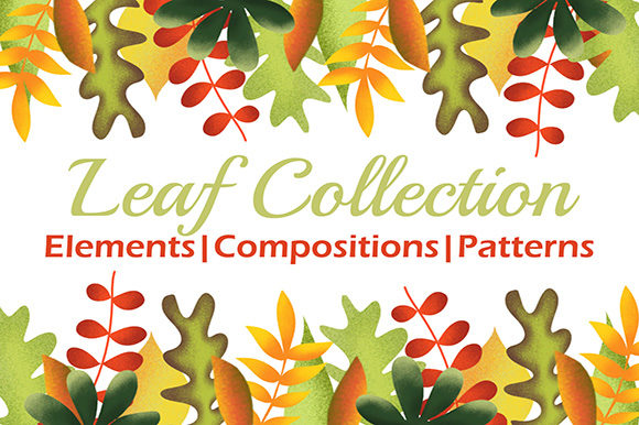 Leaf Collection Graphic Illustrations By Subi Designs