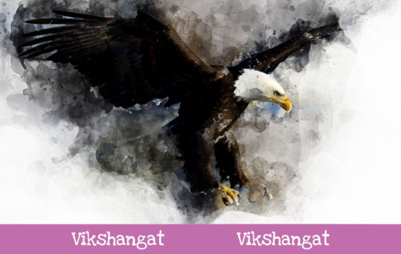 Print on Demand: Bald Eagle Fly Watercolor Art Graphic Illustrations By vikshangat