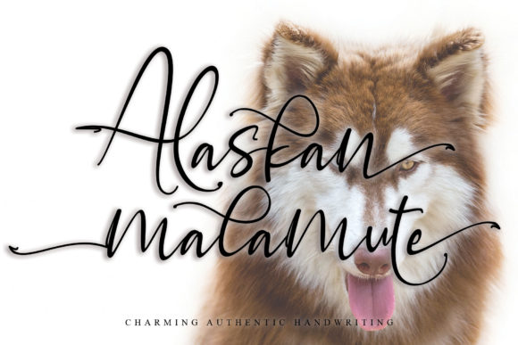Print on Demand: Alaskan Malamute Script & Handwritten Font By thomasaradea