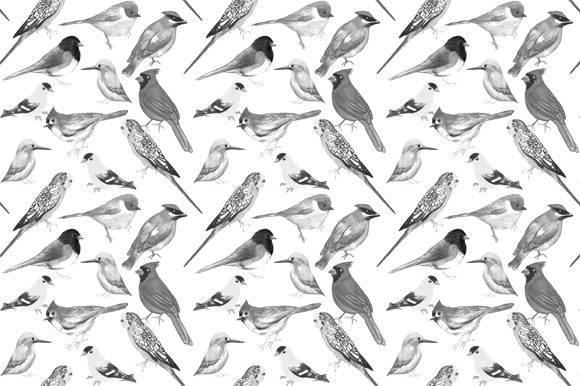 Download Free Black And White Birds Graphic By Shawlin Creative Fabrica for Cricut Explore, Silhouette and other cutting machines.