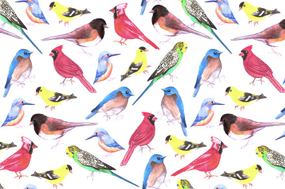 Download Free Colorful Watercolor Birds Graphic By Shawlin Creative Fabrica for Cricut Explore, Silhouette and other cutting machines.
