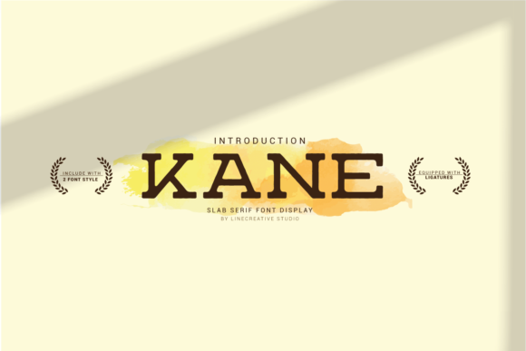 Print on Demand: Kane Slab Serif Font By Line creative