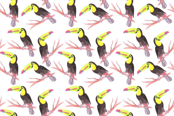 Download Free Keel Billed Toucan Bird Graphic By Shawlin Creative Fabrica for Cricut Explore, Silhouette and other cutting machines.