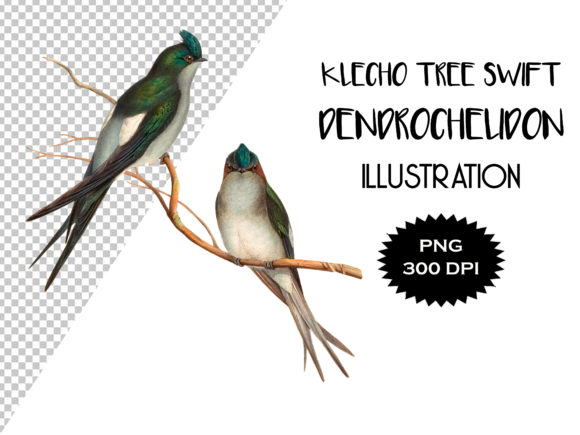 Download Free 242 Birds Designs Graphics for Cricut Explore, Silhouette and other cutting machines.