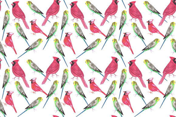 Download Free Northern Cardinal And Budgies Graphic By Shawlin Creative Fabrica for Cricut Explore, Silhouette and other cutting machines.