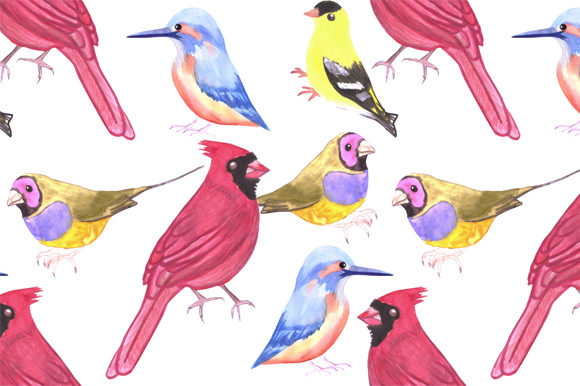 Download Free Watercolor Birds Triad Color Graphic By Shawlin Creative Fabrica for Cricut Explore, Silhouette and other cutting machines.