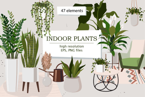 Indoor Plants Clipart Graphic Illustrations By lena-dorosh