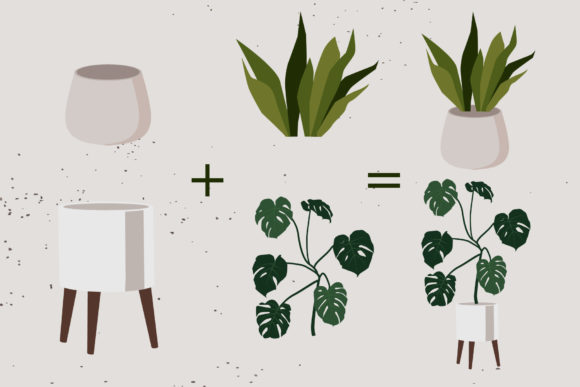 Indoor Plants Clipart Graphic Illustrations By lena-dorosh - Image 4