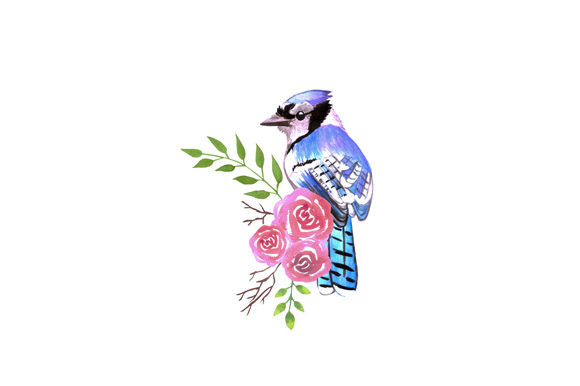 Download Free Blue Jay Bird With Red Roses Graphic By Shawlin Creative Fabrica for Cricut Explore, Silhouette and other cutting machines.