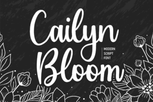 Print on Demand: Cailyn Bloom Script & Handwritten Font By Balpirick