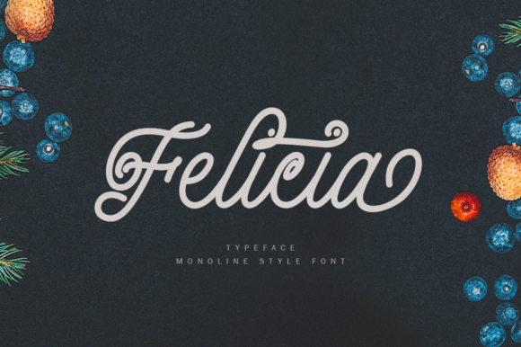 Print on Demand: Felicia Script & Handwritten Font By Jorse