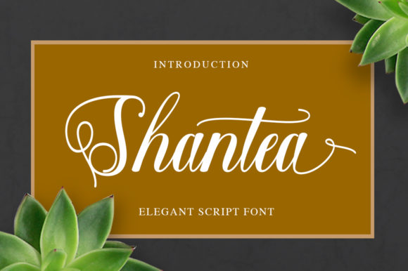 Print on Demand: Shantea Script & Handwritten Font By Solidtype