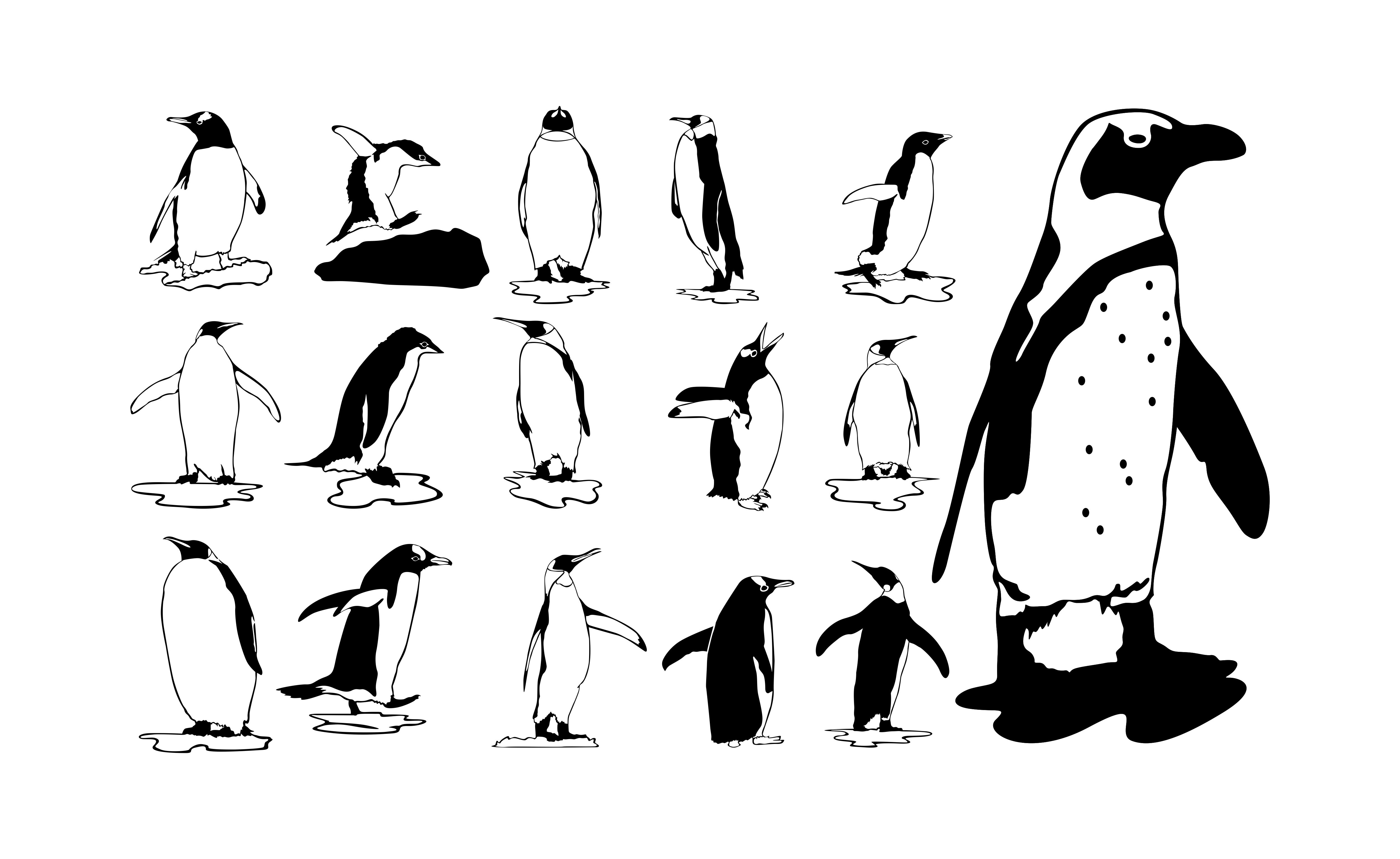 Download Free Penguin With Line Art Style Set Bundle Graphic By Arief Sapta for Cricut Explore, Silhouette and other cutting machines.