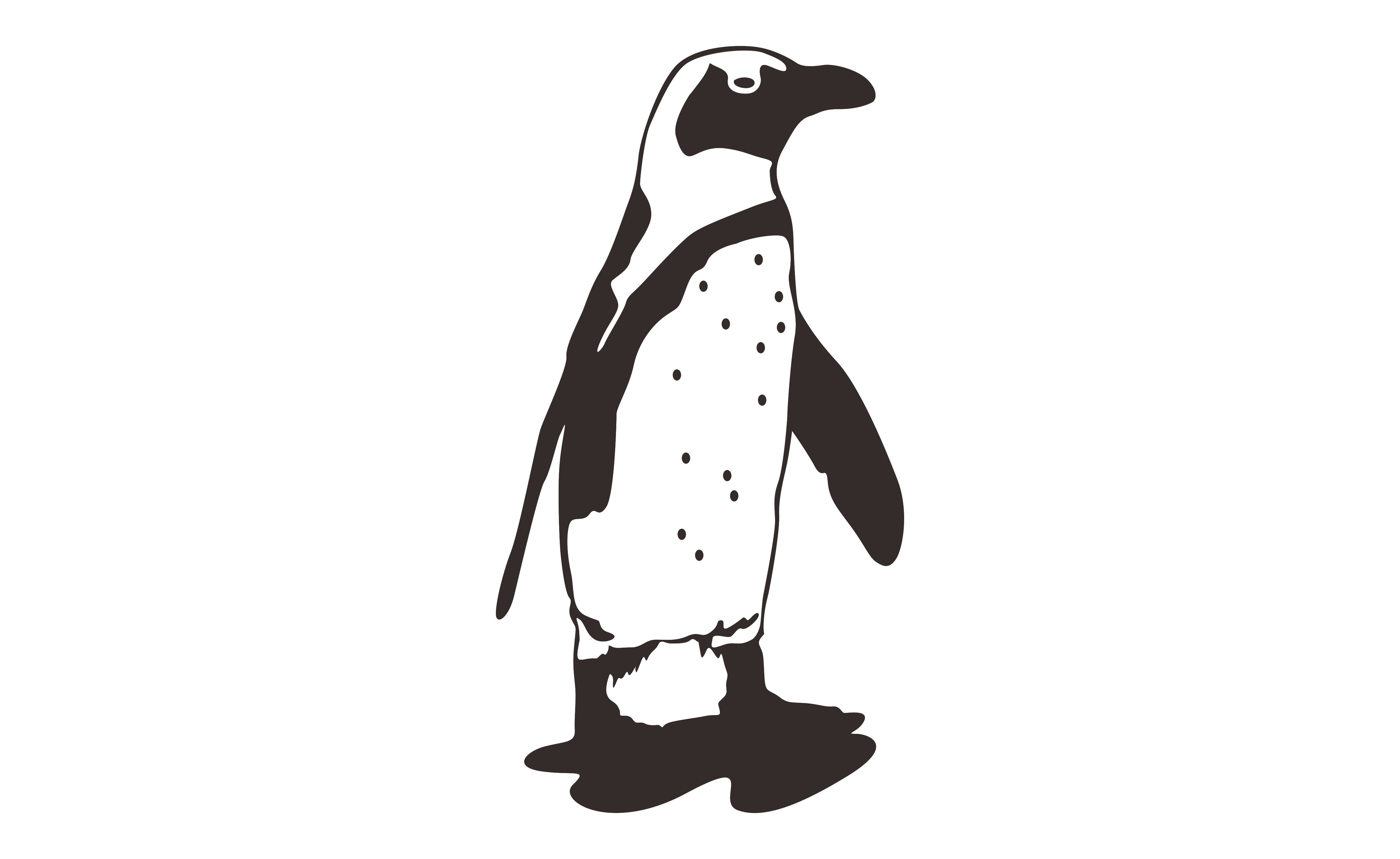 Download Free Penguin With Line Art Style Graphic By Arief Sapta Adjie for Cricut Explore, Silhouette and other cutting machines.