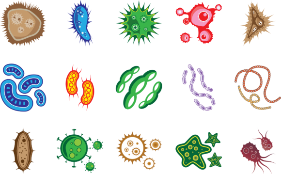 Download Free Virus Bacteria And Microorganism Shape Graphic By Booharry for Cricut Explore, Silhouette and other cutting machines.