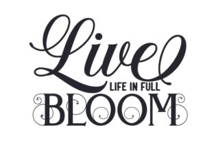 Live Life in Full Bloom Spring Craft Cut File By Creative Fabrica Crafts