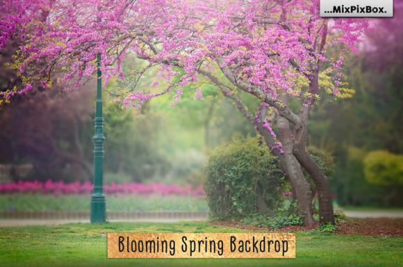 Print on Demand: Blooming Spring Backdrop Graphic Layer Styles By MixPixBox