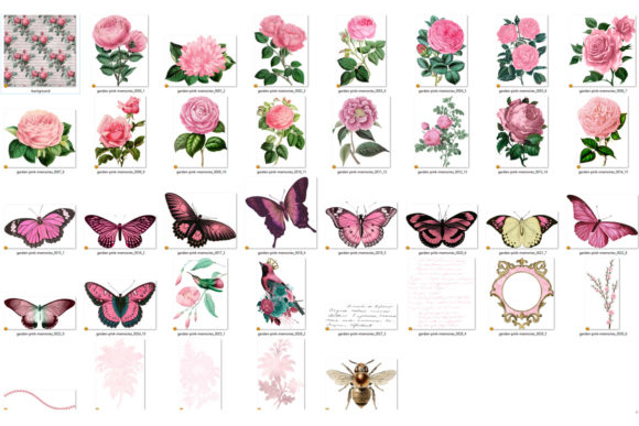 Garden Pink Memories Clipart Graphic By Digital Curio Creative Fabrica