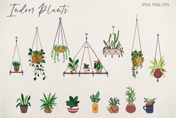 Download Free Hand Drawn Botanical Plant Illustration Graphic By for Cricut Explore, Silhouette and other cutting machines.