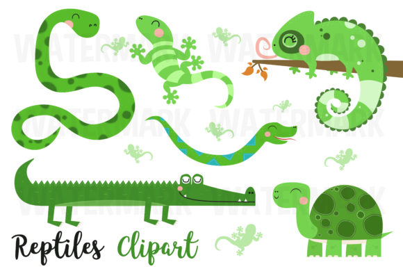 Reptiles Clipart Graphic Illustrations By magreenhouse