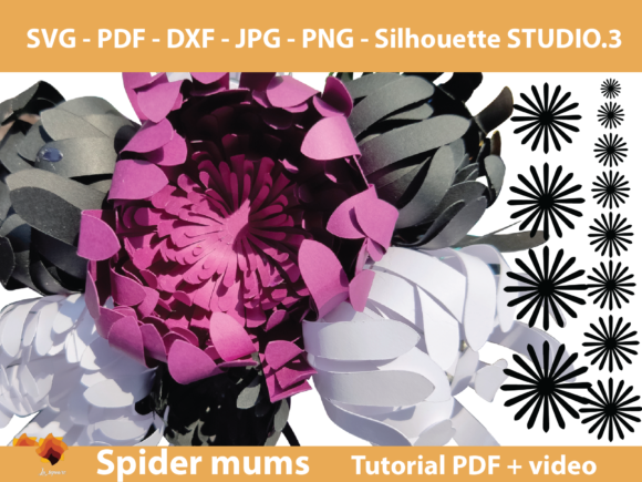 Download Free Spider Mums Paper Flower Template Graphic By Lasquare Info for Cricut Explore, Silhouette and other cutting machines.