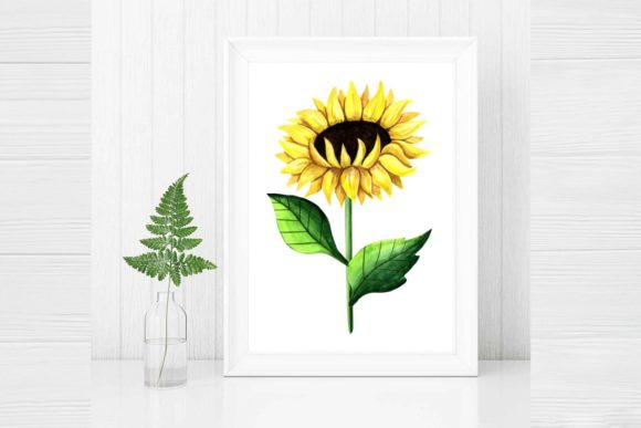 Print on Demand: Sunflower Clipart Watercolor Graphic Illustrations By  Magic world of design - Image 3