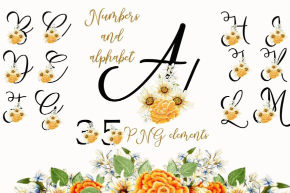 Print on Demand: Wild Flowers Alphabet and Numbers Graphic Illustrations By Andreea Eremia Design