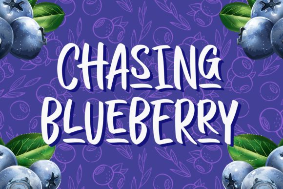 Print on Demand: Chasing Blueberry Script & Handwritten Font By variatype.id