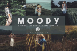Print on Demand: 14 Moody Mobile Lightroom Presets Graphic Actions & Presets By 3Motional