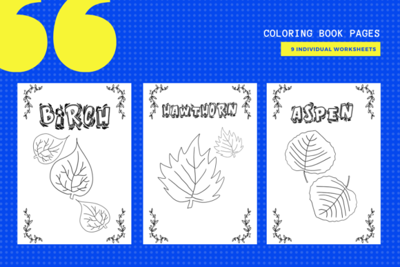 Print on Demand: Leaves & Their Names Coloring Pages X 9 Graphic Teaching Materials By yumbeehomeschool