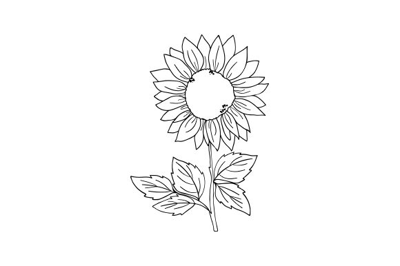 Sunflower Natur Plotterdatei von Creative Fabrica Crafts
