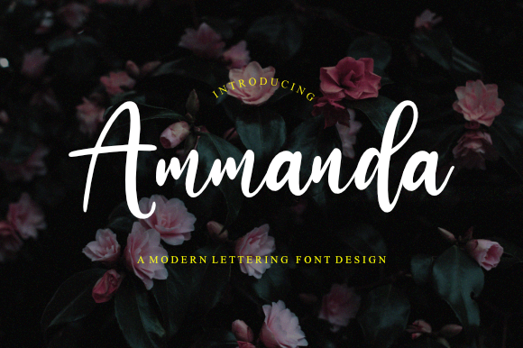 Print on Demand: Ammanda Script & Handwritten Font By Fonttype