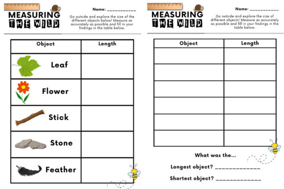 Measuring the Wild Outdoor Math Activity Graphic K By Saving The Teachers