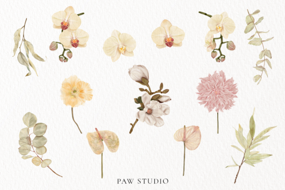 Print on Demand: Boho Tropical Floral Graphic - Home Decor Graphic Illustrations By PawStudio - Image 3