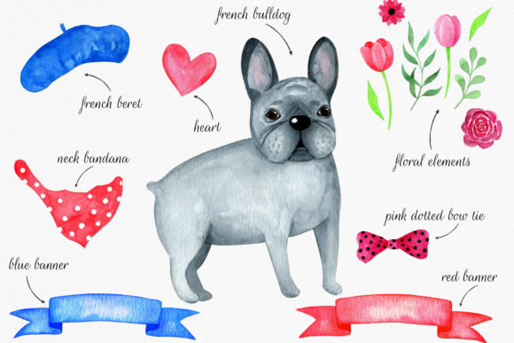 French Bulldog Watercolor Set Clipart. Graphic Illustrations By RedDotsHouse